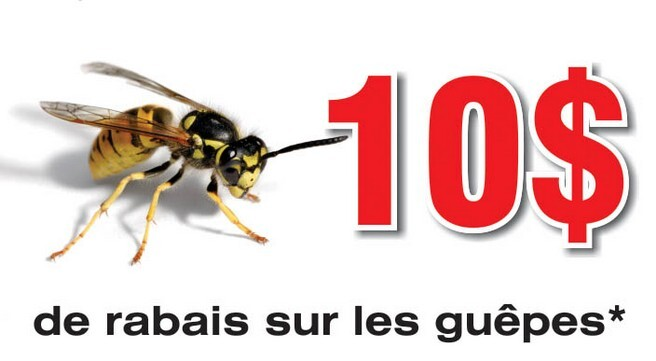 exterminateur de guepes coupon rabais